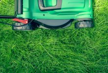 Photo of No-Fuss Lawn Mower Reviews Plans Simplified
