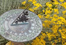 Photo of Outdoor clocks will enhance the look and style of your garden